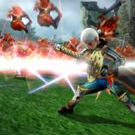 Hyrule Warriors (Wii U) - Hyrule Warriors Nintendo Wii U